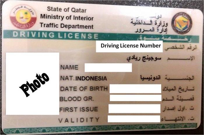 drivinglicense1