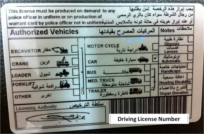 drivinglicense2